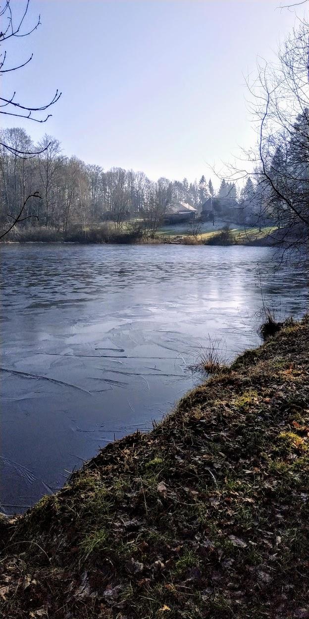 Mes balades dans les 1.000 étangs  ( Vosges )  - Page 2 Ice_2s10