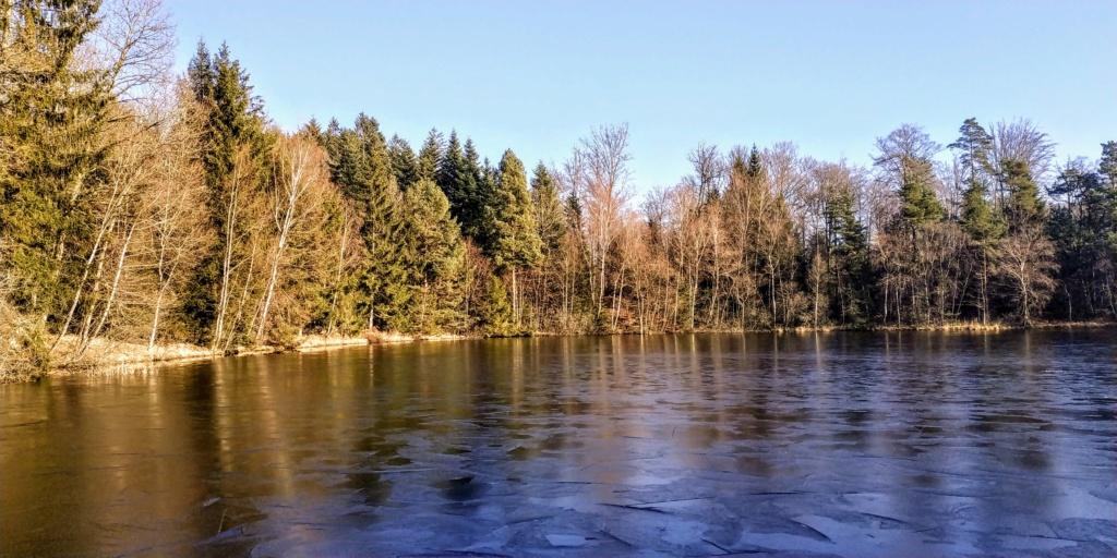 Mes balades dans les 1.000 étangs  ( Vosges )  - Page 2 Ice_se12