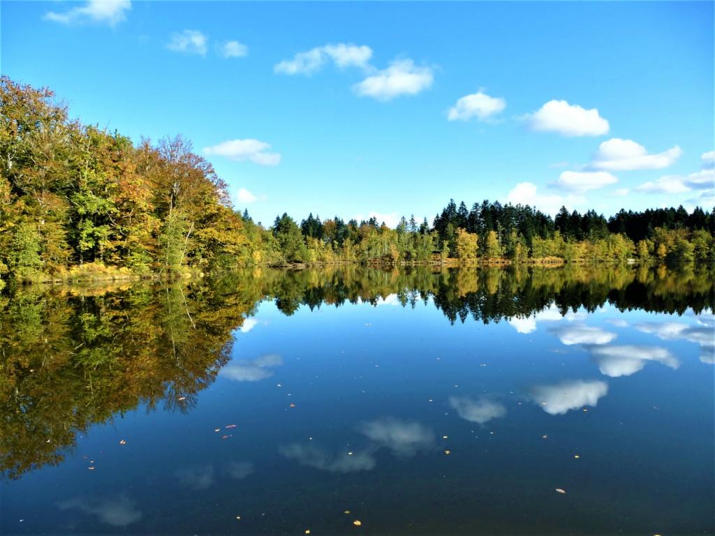 Mes balades dans les 1.000 étangs  ( Vosges )  - Page 4 Jj010