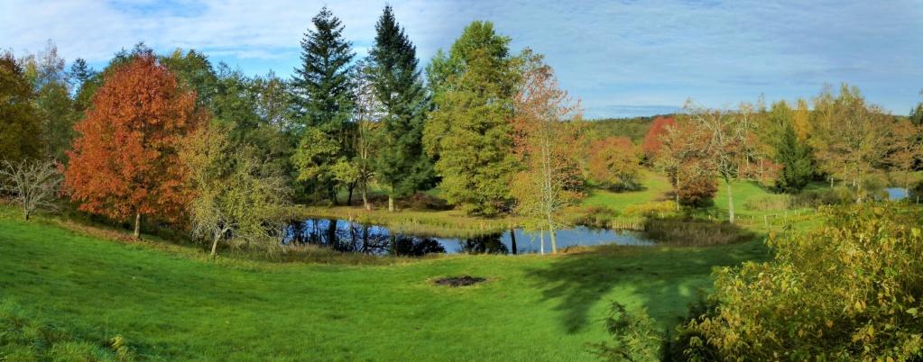 Mes balades dans les 1.000 étangs  ( Vosges )  - Page 4 La_mer10