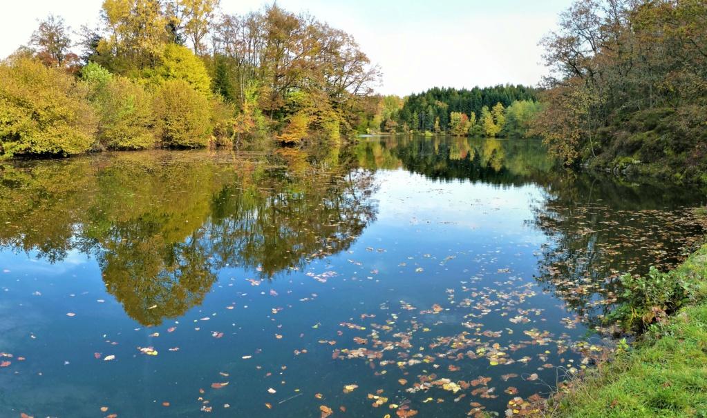 Mes balades dans les 1.000 étangs  ( Vosges )  - Page 4 La_mer11