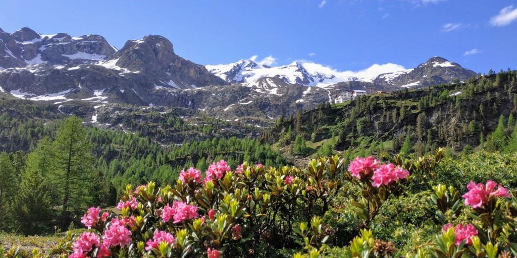Val Martello - Italie  Mar11