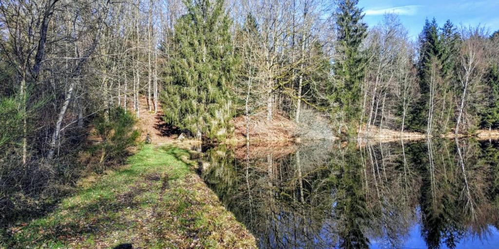 Mes balades dans les 1.000 étangs  ( Vosges )  - Page 2 Miroir10
