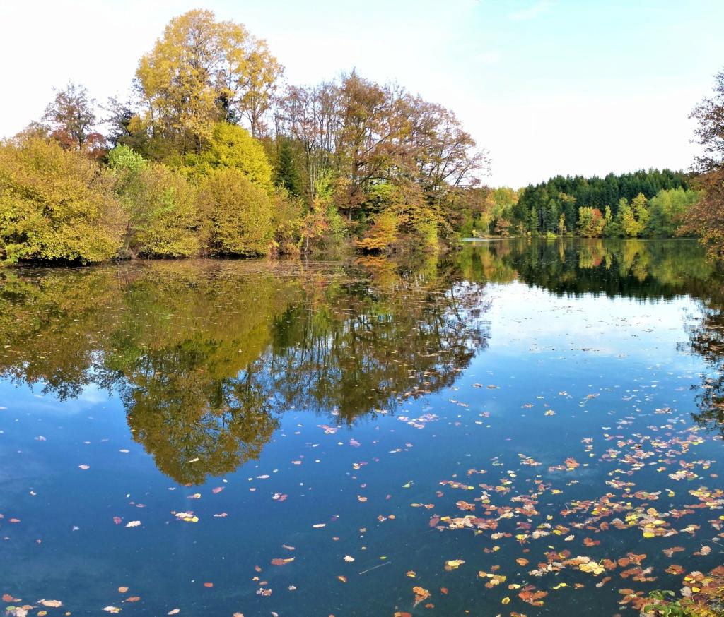 Mes balades dans les 1.000 étangs  ( Vosges )  - Page 4 Moulin10