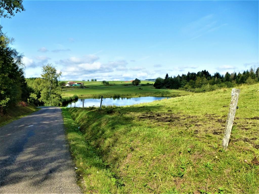 Mes balades dans les 1.000 étangs  ( Vosges )  - Page 4 P1080214