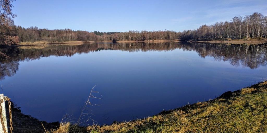 Mes balades dans les 1.000 étangs  ( Vosges )  - Page 2 Pel10