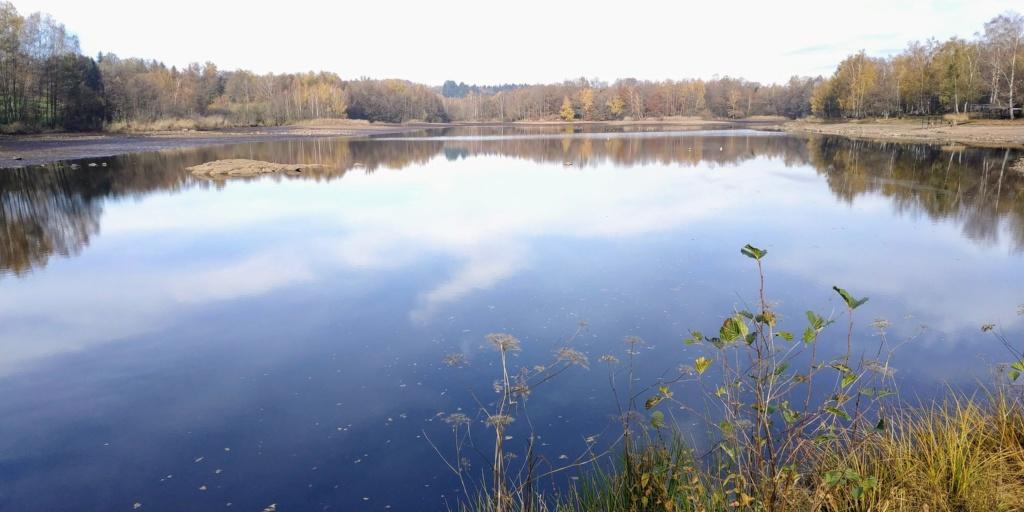 Mes balades dans les 1.000 étangs  ( Vosges )  Pellev11