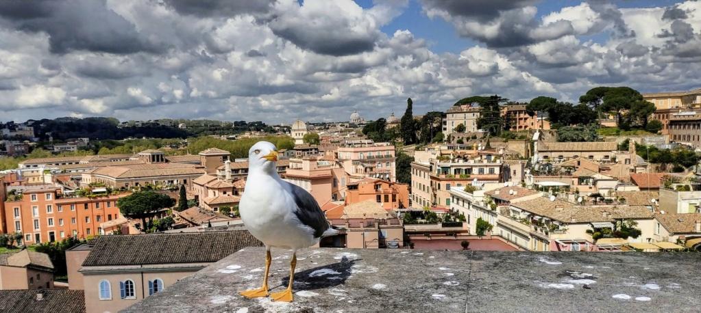 Roma avril 2019  Pic_2010