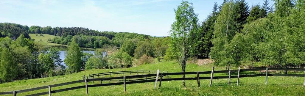 Mes balades dans les 1.000 étangs  ( Vosges )  Platea10