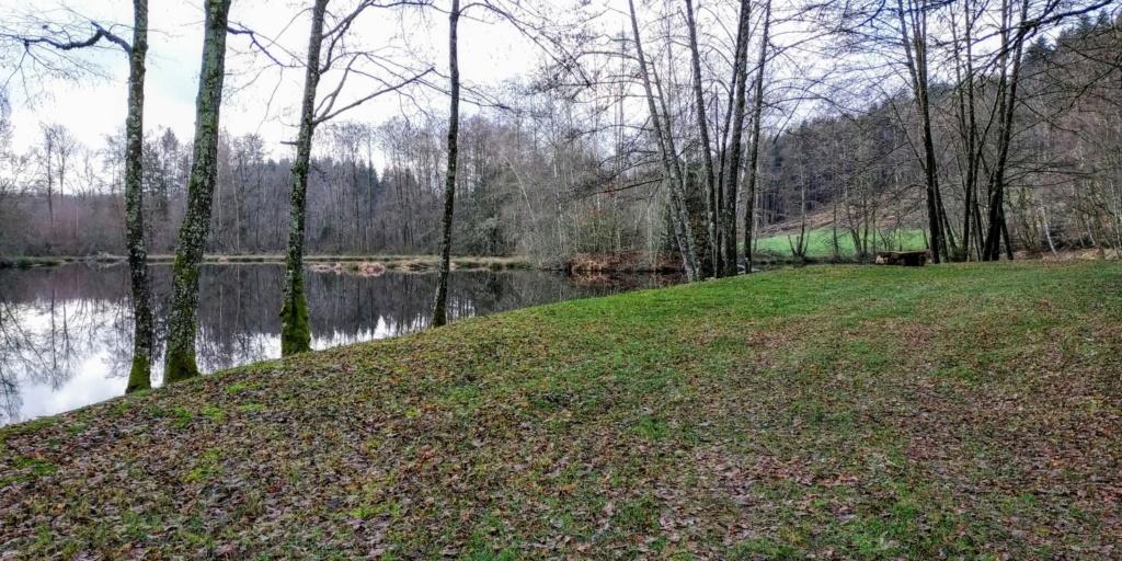 Mes balades dans les 1.000 étangs  ( Vosges )  - Page 2 Sap110