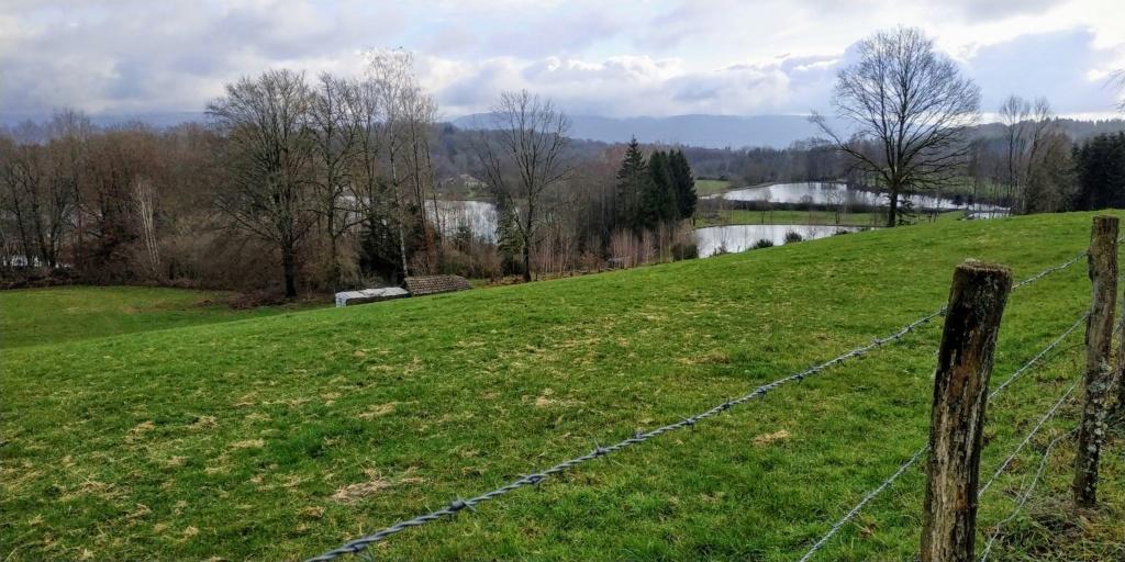 Mes balades dans les 1.000 étangs  ( Vosges )  - Page 2 Sap410
