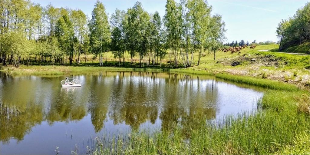 Mes balades dans les 1.000 étangs  ( Vosges )  Tour2010