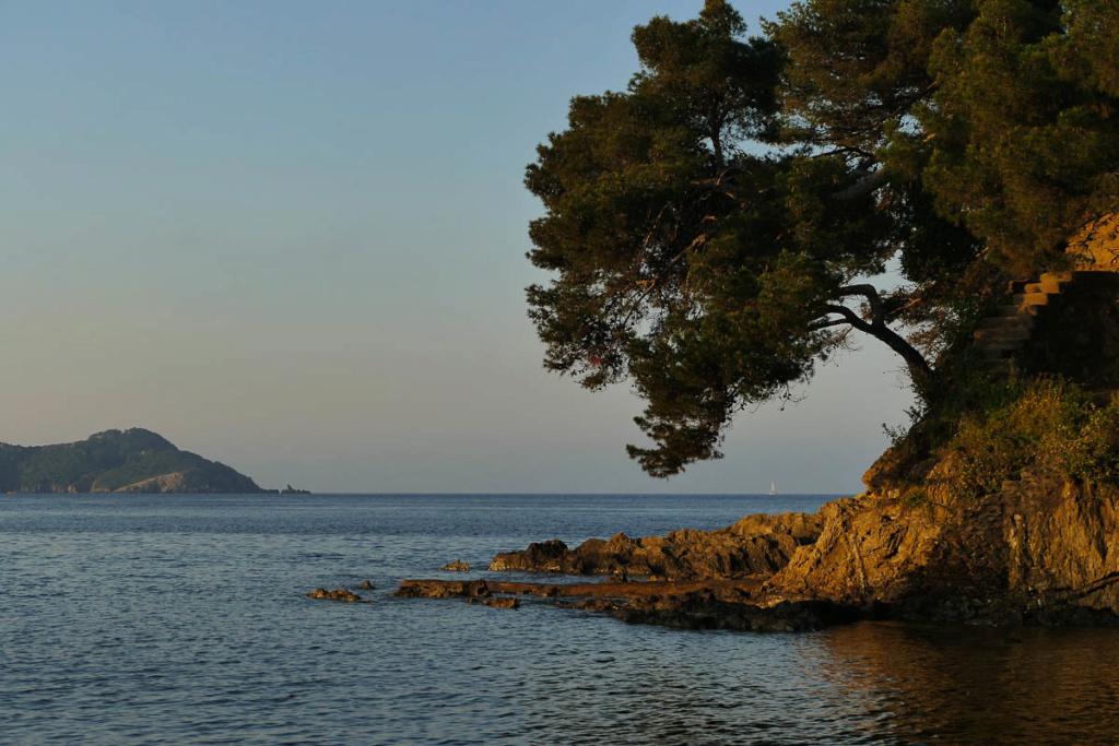 La presqu'île de Giens  25052011