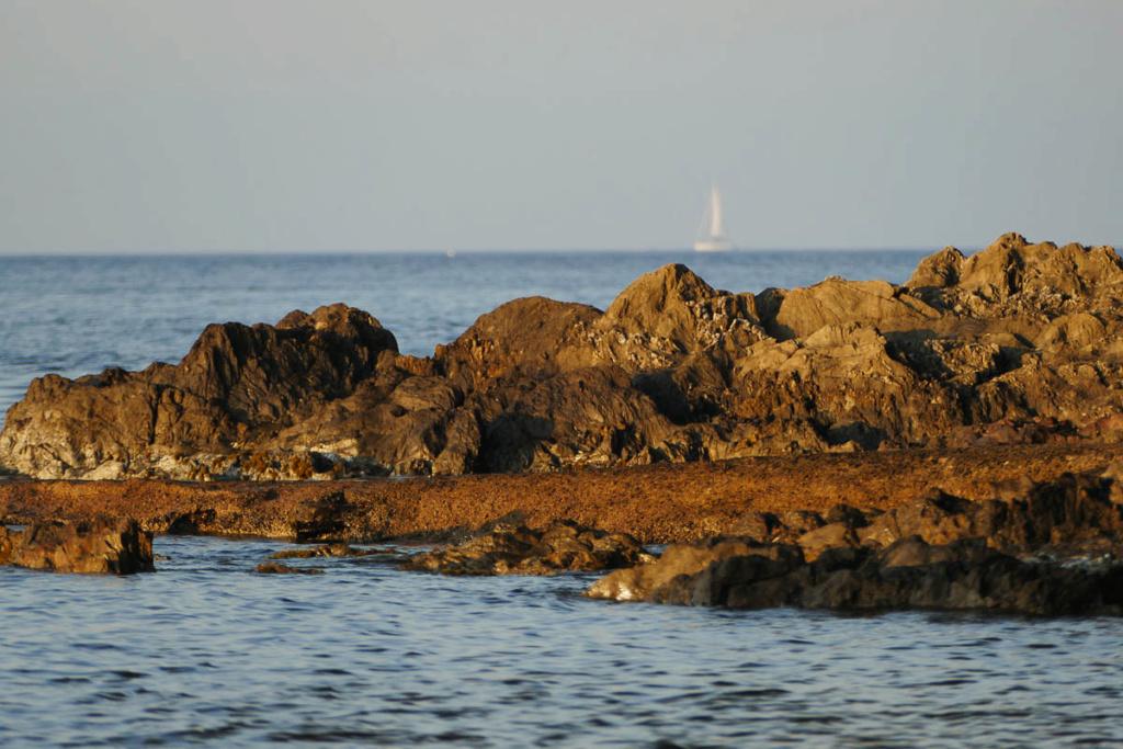La presqu'île de Giens  25052012