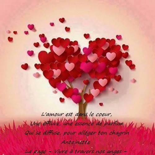 mon bébé d'amour guillaume - Page 4 11030310