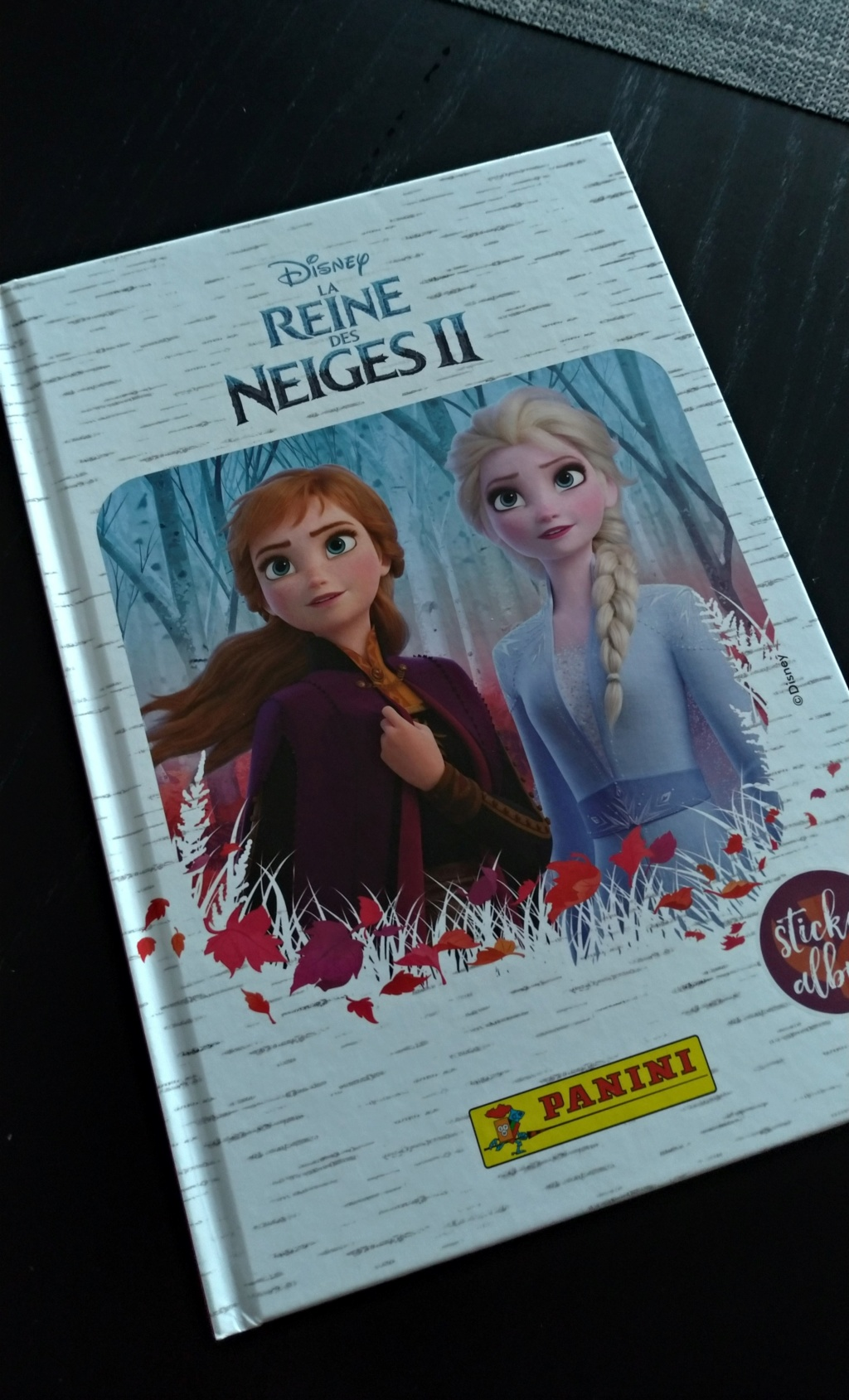 Les albums Panini Disney (TOPIC UNIQUE) - Page 5 P_201925