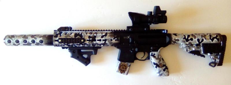 HK 416 Umarex T4E, bon choix ? Sig_sa12