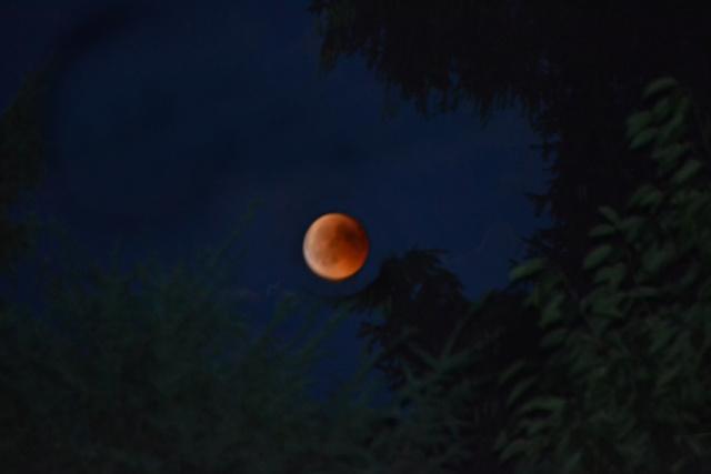 Der Mond - Seite 2 Blutmo10