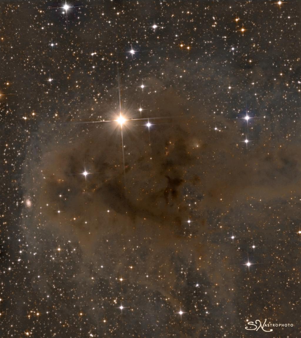 nebuleuse obscure et sombre   Ldn12510