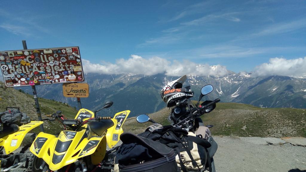 stella alpina 2018 P_201817