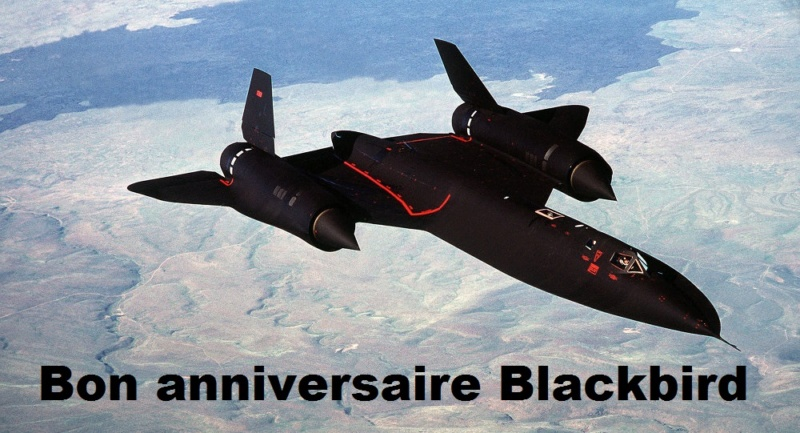 L'oiseau noir prend un an aujourd'hui 10347410