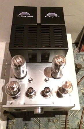 Mr Liang valve integrated amplified Img_e412