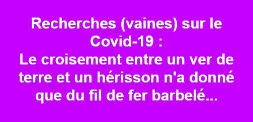 LES BLAGUES DES CONFINE(E)S - Page 8 00513410