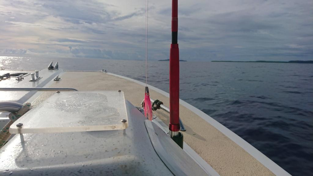 Wallis et Futuna .... nos eaux sont nettoyées ... Dsc_0111