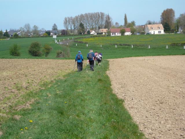 On a bien Ri à Saint Aignan sur Ry P1050521