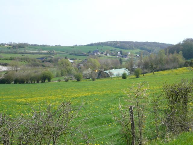 On a bien Ri à Saint Aignan sur Ry P1050528