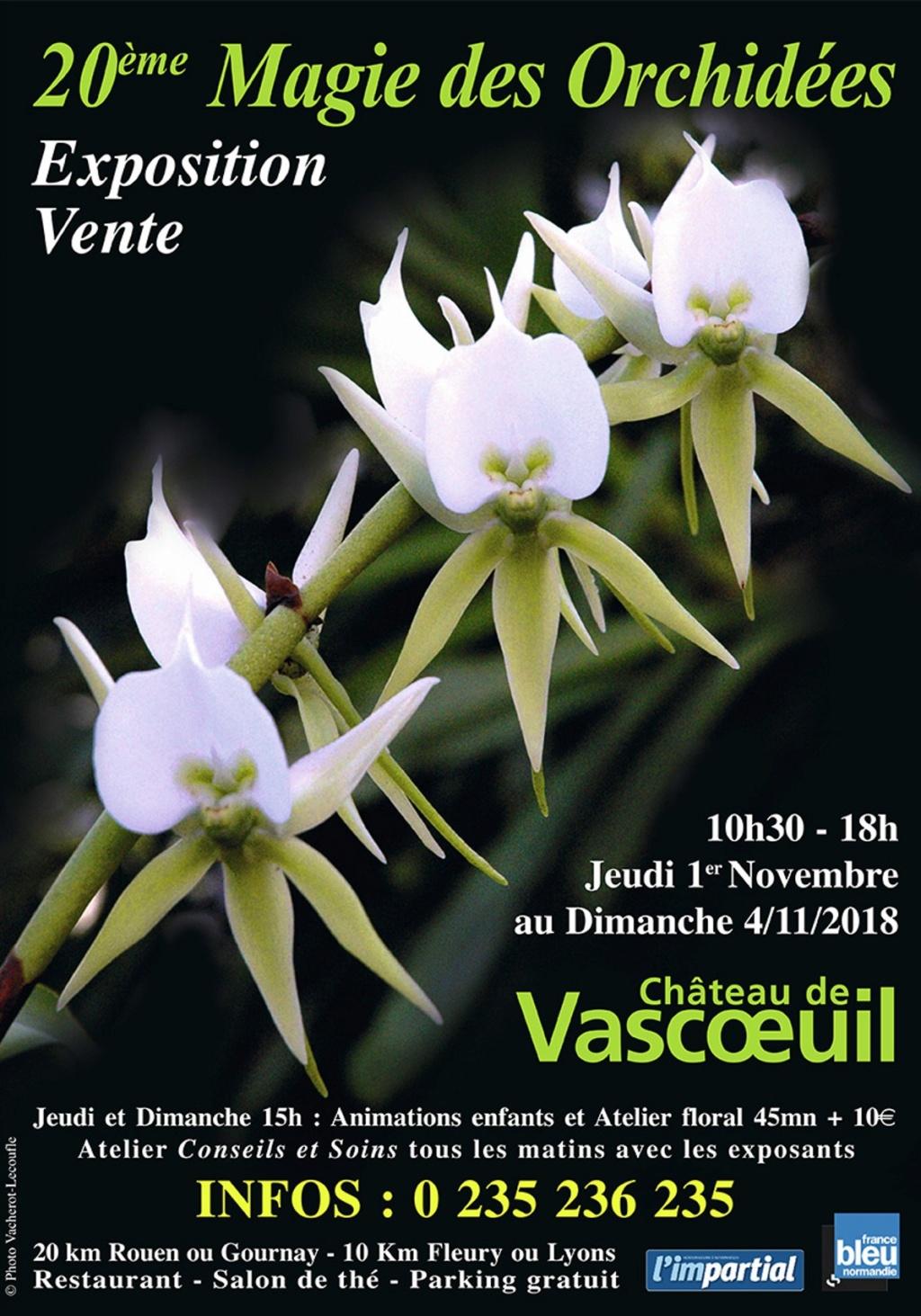 Chateau de Vascoeuil près de Rouen Hhhhhh10
