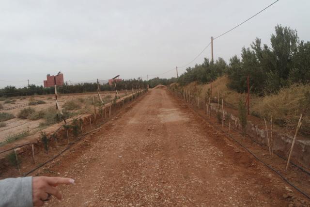 [Maroc Camp/Dernières nouvelles] hotel climat a BOUARFA/camping a la ferme a MENGOUB Sam_3414