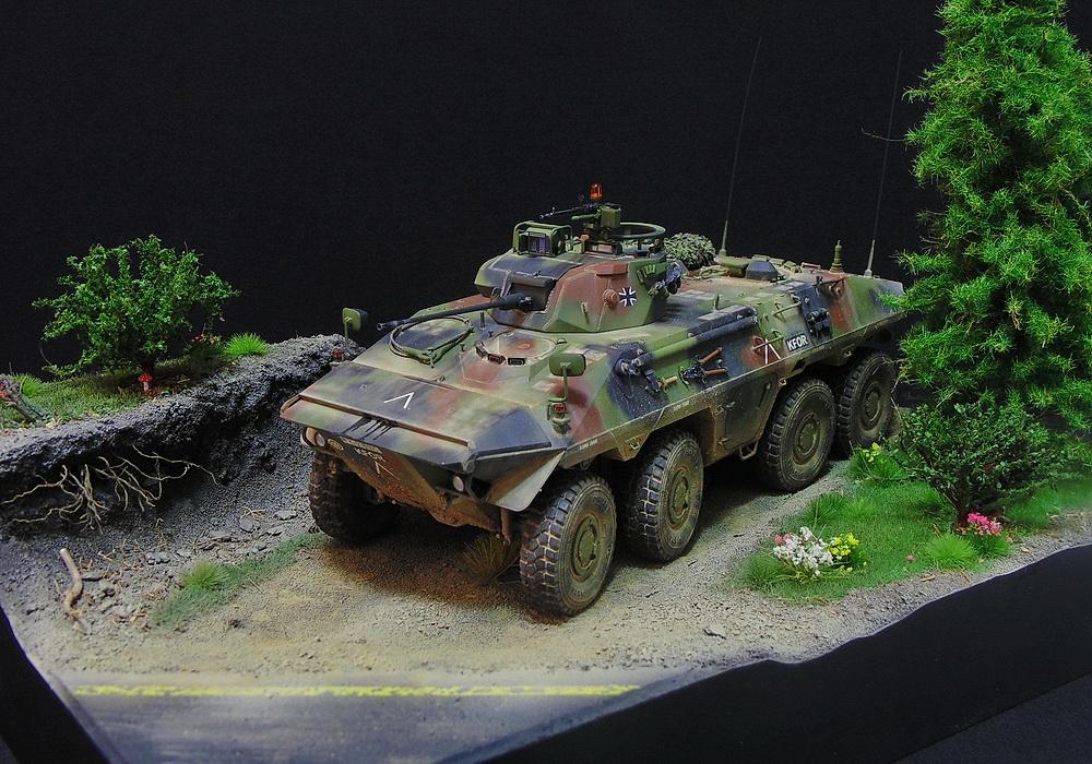 Бронеавтомобиль SpPz 2 Luchs 00112