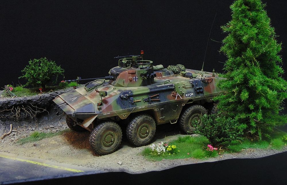 Бронеавтомобиль SpPz 2 Luchs 00212