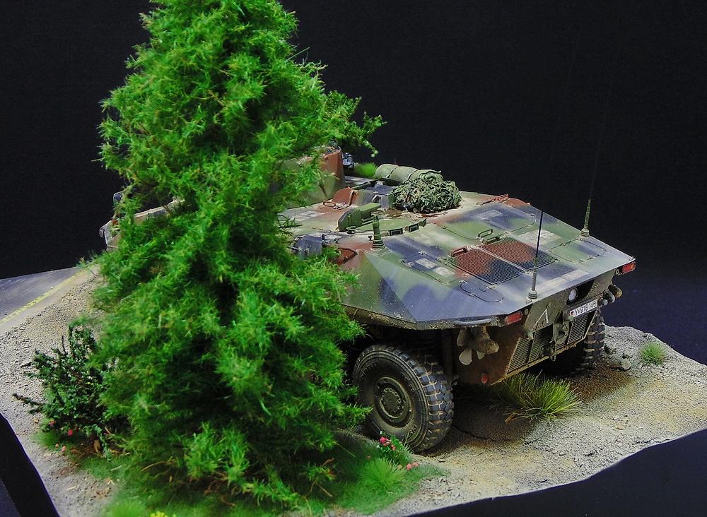 Бронеавтомобиль SpPz 2 Luchs 00410