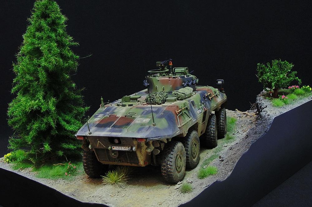 Бронеавтомобиль SpPz 2 Luchs 00510