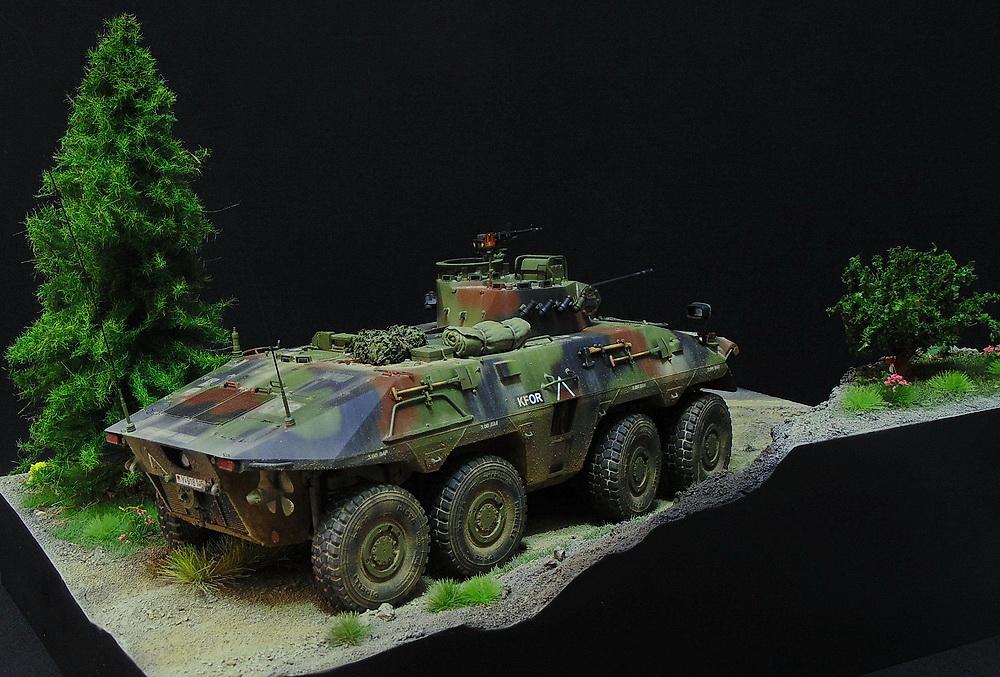 Бронеавтомобиль SpPz 2 Luchs 00610