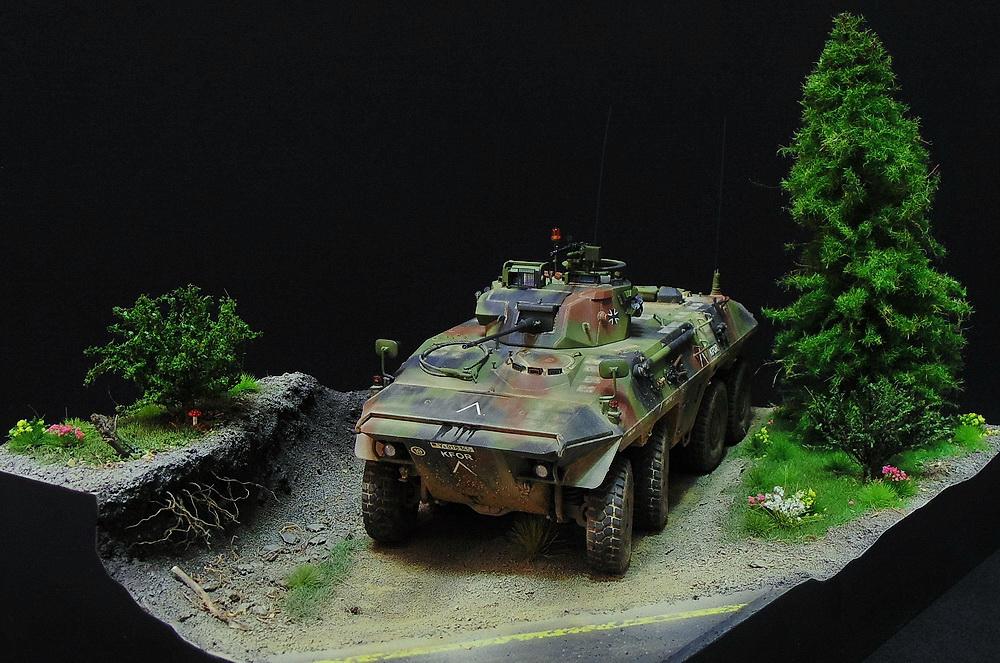 Бронеавтомобиль SpPz 2 Luchs 00710
