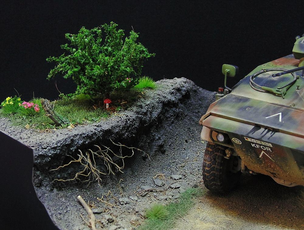 Бронеавтомобиль SpPz 2 Luchs 00810