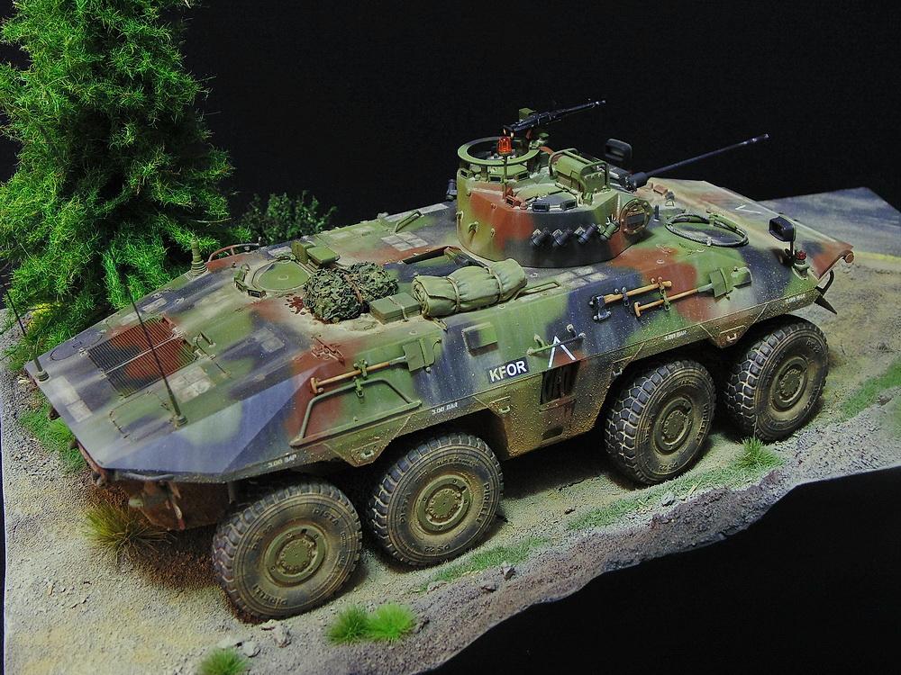 Бронеавтомобиль SpPz 2 Luchs 01312