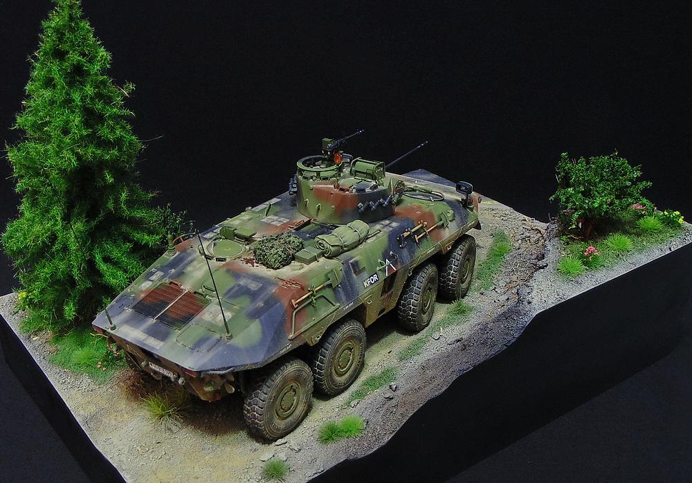 Бронеавтомобиль SpPz 2 Luchs 01711