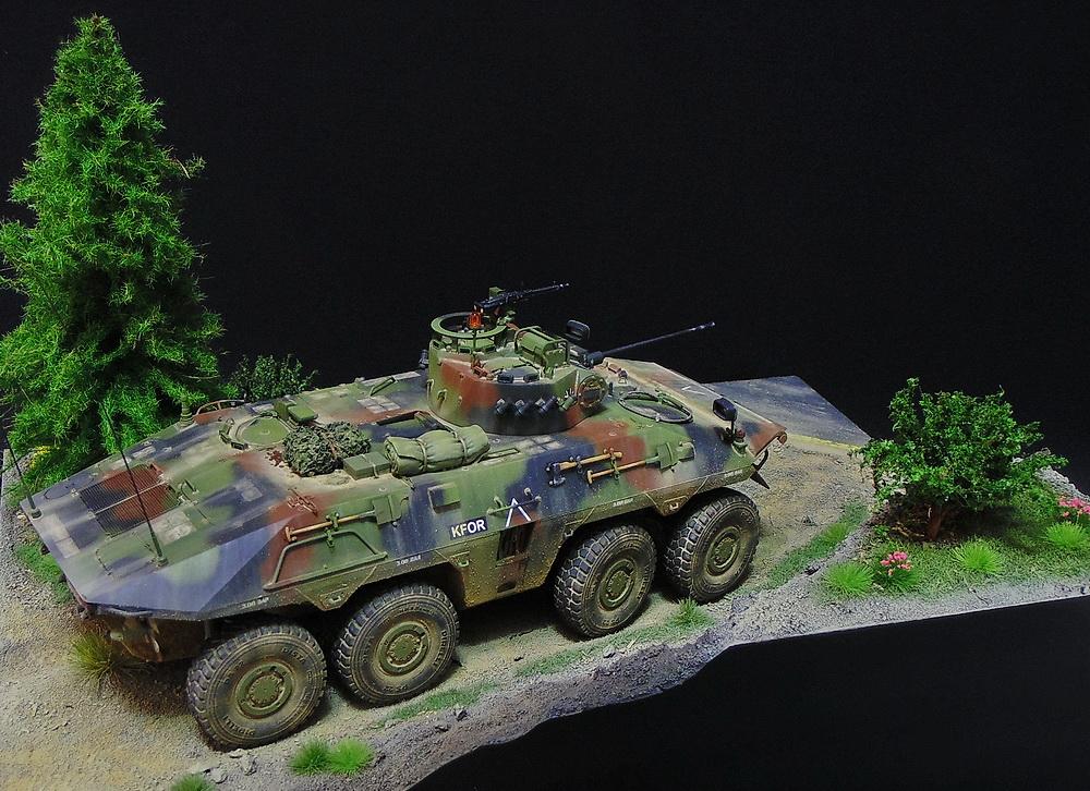Бронеавтомобиль SpPz 2 Luchs 01811