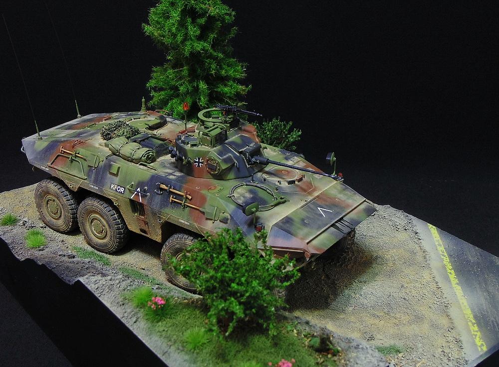 Бронеавтомобиль SpPz 2 Luchs 01911