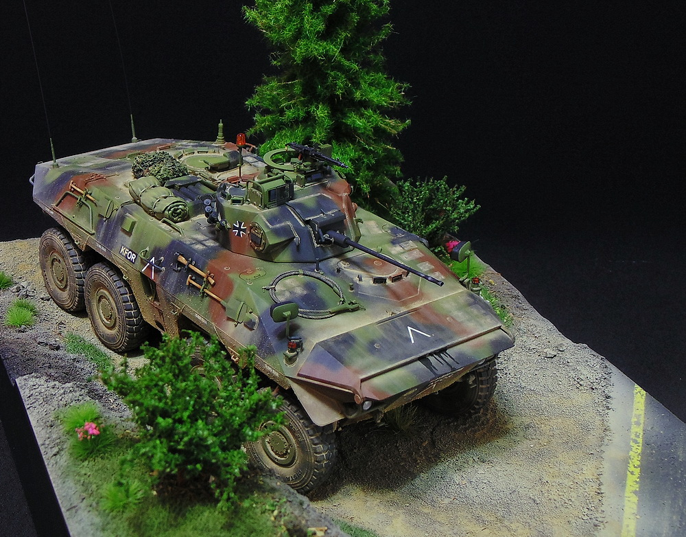 Бронеавтомобиль SpPz 2 Luchs 02011