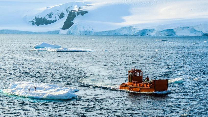 Campaña Antártica 2020/21 Rhai_510