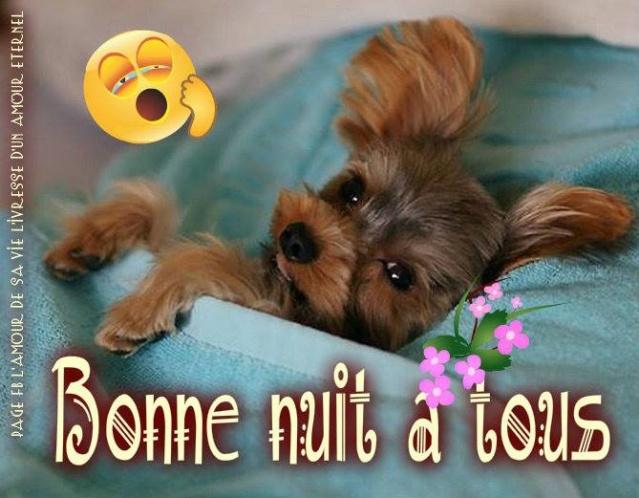 bonzour bonne zournée et bonne nuit notre ti nid za nous - Page 39 Bonne-21