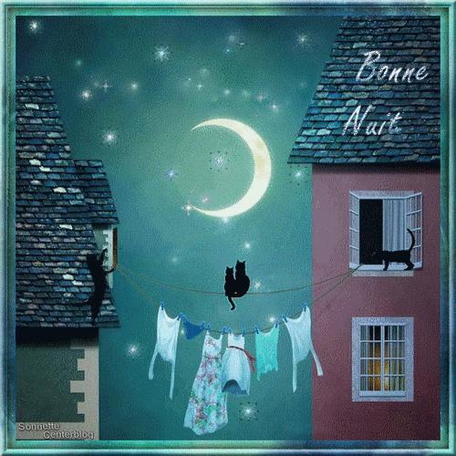 bonzour bonne zournée et bonne nuit notre ti nid za nous - Page 3 Chats_10