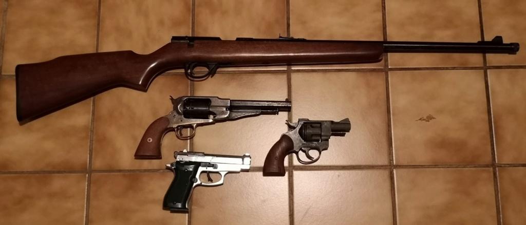 Transport d'une arme par héritage avant déclaration Petoir10