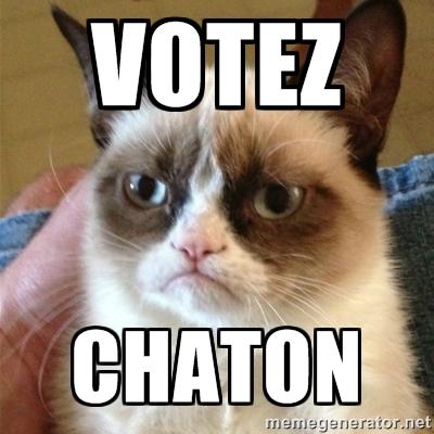 """Les chats de Matou""""_ 60923210"""
