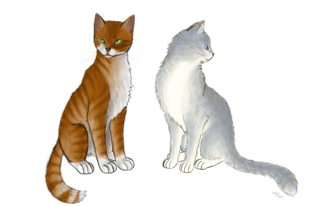 WindClan Ceremony Requests We_be_12